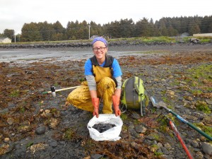 Christine collecting butter clams in Kodiak Island, Alaska